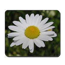 Daisy - Mousepad