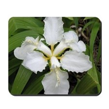White Lily - Mousepad