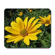 Yellow Flower - Mousepad