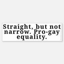 Straight, pro-gay equality - Sticker (Bumper)