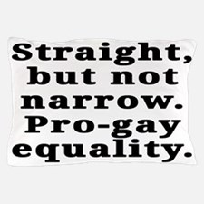 Straight, pro-gay equality - Pillow Case
