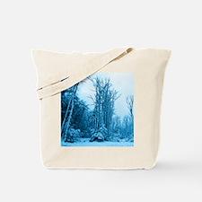 Evening snow Tote Bag