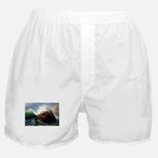 Bierstadt Seal Rock Boxer Shorts