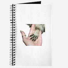 Unique Raccoons Journal