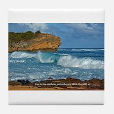 Shipwreck Beach Shorebreaks Tile Coaster