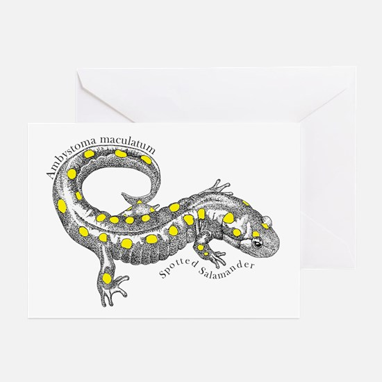 Cute Wildlife conservation society Greeting Cards (Pk of 10)