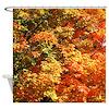 Autumn Leaf Colors Shower Curtain