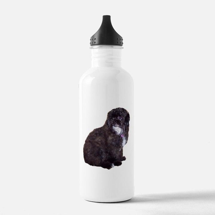 Shih Poo Love Water Bottle