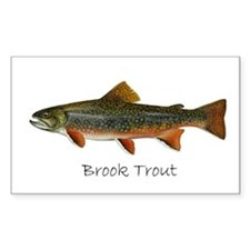 Painting of Brook Trout Decal