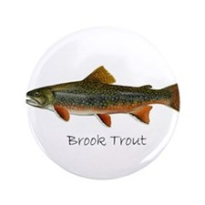 "Painting of Brook Trout 3.5"" Button"
