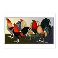 Rooster Dream Team Postcards (Package of 8)