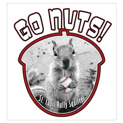 RALLY SQUIRREL Go Nuts St Louis Wall Art Framed Print