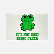Not Easy Being Green Frog Rectangle Magnet