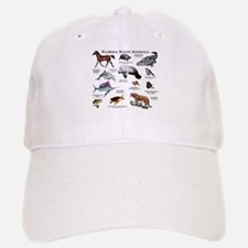 Florida State Animals Baseball Baseball Cap
