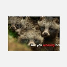 Anti-Fur Raccoon Dog pups Rectangle Magnet