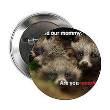 "Anti-Fur Raccoon Dog pups 2.25"" Button"