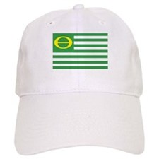 Ecology Flag Baseball Cap