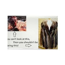 Fur Shame Rectangle Magnet