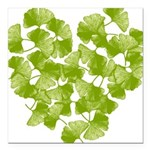ginkgo-heart_tr.png Square Car Magnet 3