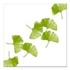 """Ginkgo Leaves Square Car Magnet 3"""" x 3"""""""