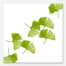 "Ginkgo Leaves Square Car Magnet 3"" x 3"""