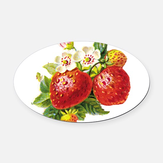 vic-strawberry.png Oval Car Magnet