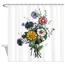 Jean Louis Prevost 9.png Shower Curtain