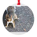 squirrel_nc.jpg Round Ornament