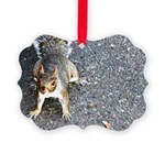 squirrel_nc.jpg Picture Ornament