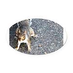 squirrel_nc.jpg Oval Car Magnet
