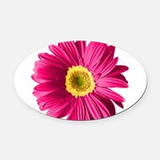 pop-daisy_fs.png Oval Car Magnet