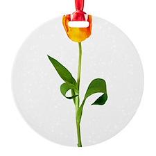 tulip_new2.png Ornament