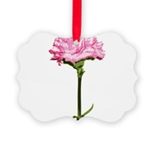PINK-CARNATION_NEW.png Ornament