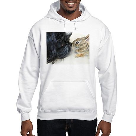 Love & Curiosity Hooded Sweatshirt
