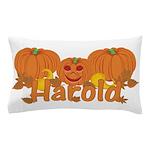Halloween Pumpkin Harold Pillow Case