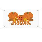 Halloween Pumpkin Harold Banner