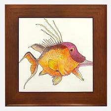 Hogfish Framed Tile