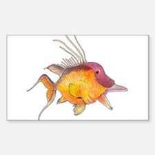 Hogfish Decal