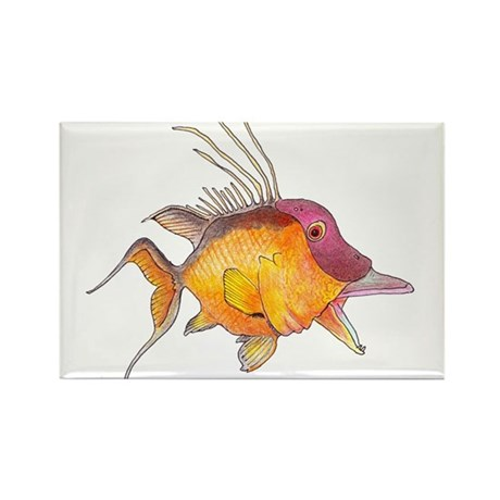 Hogfish Rectangle Magnet