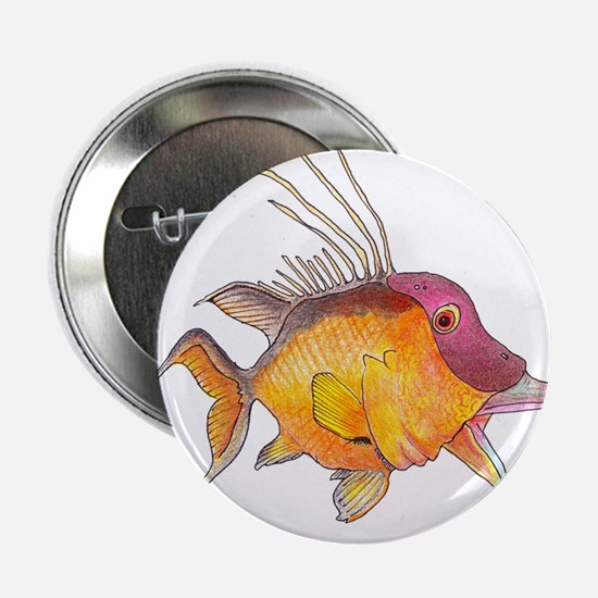 "Hogfish 2.25"" Button"