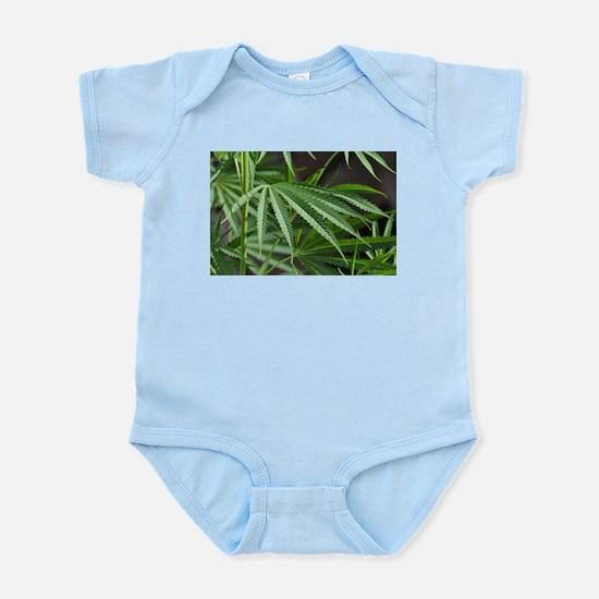 Cannabis Garden Infant Bodysuit