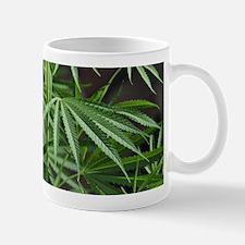 Cannabis Garden Mug