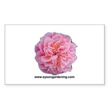 Pink Rose Club Rectangle Decal