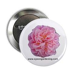 Pink Rose Club Button
