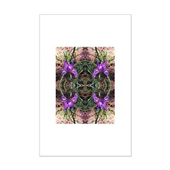 Pacific Iris Reflection Posters