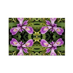 Pacific Iris 2 Reflection Rectangle Magnet