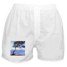 Claude Monet Antibes Boxer Shorts