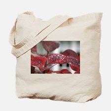 Dew on red leaves, Tote Bag