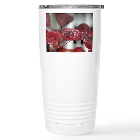 Dew on red leaves, Stainless Steel Travel Mug