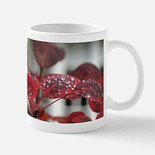 Dew on red leaves, Mug